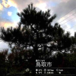2019年10月23日(水)午前7時の気温18.4度、湿度86%、雨あがる?雲の動きが早い鳥取市滝山の朝です。