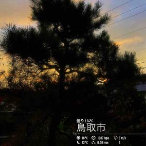 2019年2019年11月11日午前7時の気温16.2度、湿度66%、朝日が見えかけたところで予報が「雨のち晴れ」に変わった鳥取市滝山の朝です。