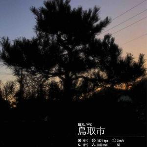 2019年11月13日(水)午前6時の気温7.6度、湿度80%、快晴、夜は雨の予報で迎える鳥取市滝山の朝です。