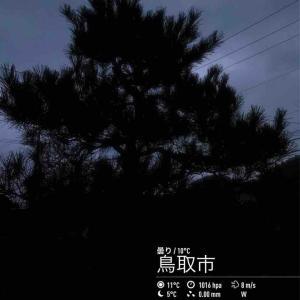 2019年11月14日(木)午前7時の気温12.9度、湿度74%、強目の雨が降る鳥取市滝山の朝です。