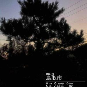 2019年11月15日(金)午前7時の気温4.7度、湿度67%、快晴で、ぐっと冷え込んだ鳥取市滝山の朝です。