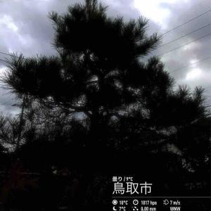 2019年11月19日(火)午前6時の気温11.5度、湿度66%、曇り空、色がない鳥取市滝山の朝です。