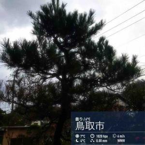 2019年12月3日(火)午前7時の気温7.2度、湿度66%、冷たい雨が降る鳥取市滝山の朝です。