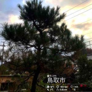 2019年12月4日(水)午前7時の気温6.0度、湿度81%、曇り空で迎える鳥取市滝山の朝です。