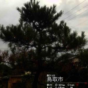 2019年12月5日(木)午前7時の気温5.3度、湿度66%、雨降りで迎える鳥取市滝山の朝です。