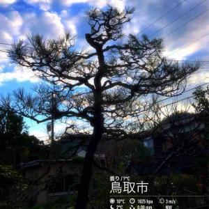 2019年12月8日(日)午前8時の気温6.2度、湿度62%、スカッと晴れで迎える鳥取市滝山の朝です。