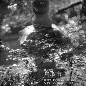 2020年1月20日(月)午前6時の気温6.6度、湿度66%、鳥取市滝山の夜明け前です。 写真は過日の我が家の朝です。