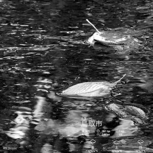 2020年1月23日(木)午前6時の気温8.0度、湿度94%、雨降りで迎える鳥取市滝山の夜明け前です。 写真は過日、雨の鳥取市滝山です。