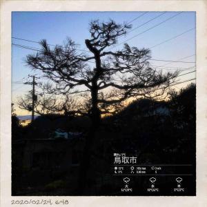 2020年2月24日(月)午前6時の気温0.8度、湿度74%、少し冷え込み快晴で迎える鳥取市滝山の夜明け直前です。