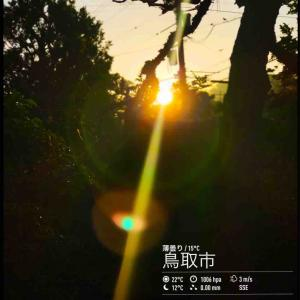 2020年5月27日(水)午前5時の気温14.9度、湿度94%、朝陽が眩しい鳥取市滝山の朝です。