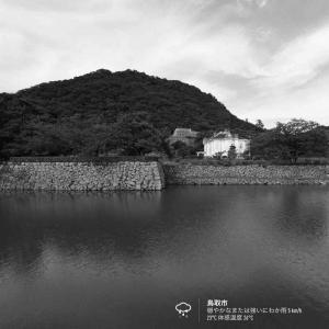 2020年7月25日(土)午前7時の気温23.7度、湿度78%、曇り空で迎える鳥取市滝山の朝です。 写真は先日の久松公園お堀端です。