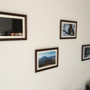 部屋に写真を飾ってみた