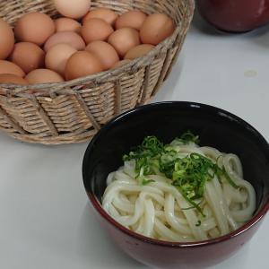 三嶋製麺所さんのおうどん