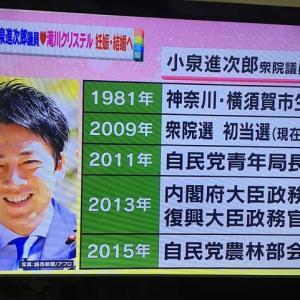 将来の総理大臣、小泉進次郎結婚