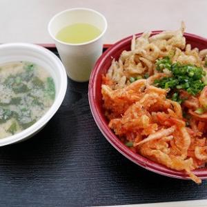 静岡県由比港で桜えび~!!