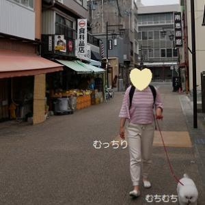 豊川稲荷でおいなりを買うのだ!!