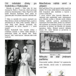 チェコ語のチラシ