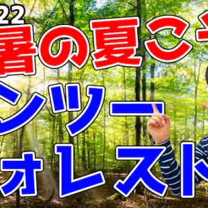 猛暑日こそ【ワンツーフォレスト】で森林浴を!