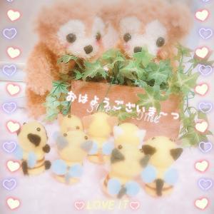 *すこしずつ~(о´∀`о)*