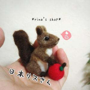 *リスさんと秋満喫(*^▽^*)*