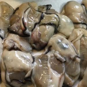 ソムタム失敗💦と牡蠣のオイル漬け