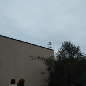 まずは大江ノ郷でハロウィンです