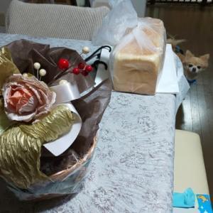 「に志かわ」対「乃が美」の食パン対決!