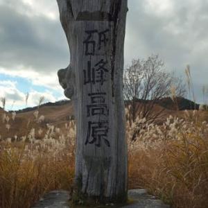 砥峰高原のすすきを見てきました