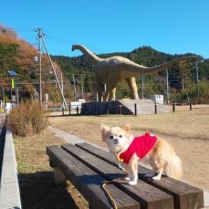 恐竜と遊びました