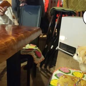 龍野の「町家カフェそら」さんでランチしました