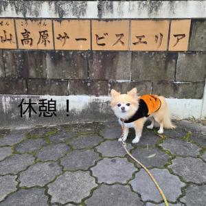鳥取 岡山 ドライブ旅 1
