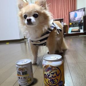 わが家のビール事情。
