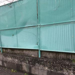 フェンス取替