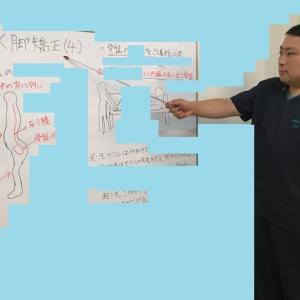 【火曜日の青森整体教室】 X脚矯正(4)について勉強をしました。