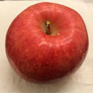 【美味しいりんごをいただきました。】