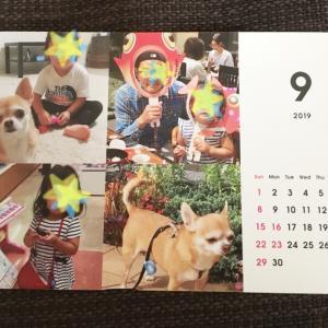 バンナ娘ちゃんカレンダー
