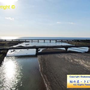 2019/11/10 酒匂川・鮎、産卵床確認できました