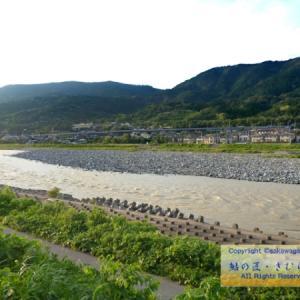 2020/03/29 酒匂川、あれから8年目。そして・・