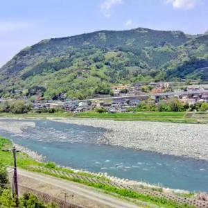 2020/04/26 酒匂川、鮎 巡り来る日はペタペタの