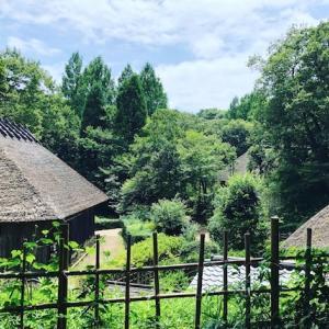 夏のお出かけ:民家園と縄文の村