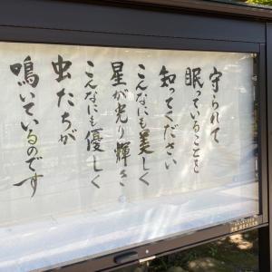 鎌倉 円覚寺。