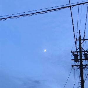 上弦の月☆