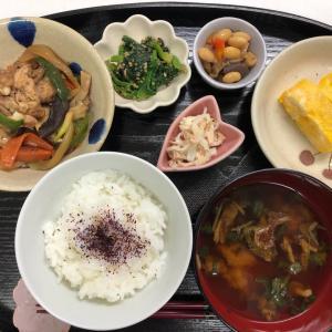 今日の夕飯とモコモコ〜ズ☆