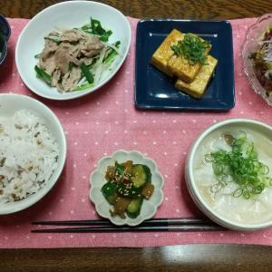 【晩ごはん】豚ニラもやし炒め、甘辛豆腐ステーキ。