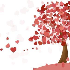 おやすみ前の音楽療法「安らぎを求めて」/愛の癒し