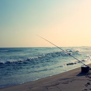 心の音楽療法「安らぎを求めて」/音楽で海へ「かもめはかもめ」