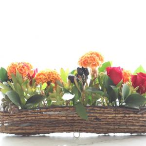 横長の万能な花器にケイトウやトウガラシなど秋のアレンジ