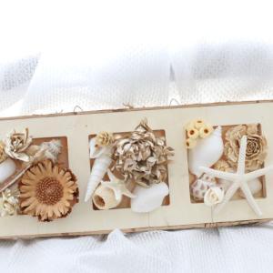 写真を飾るみたいにお花と貝殻を 海と花シリーズ