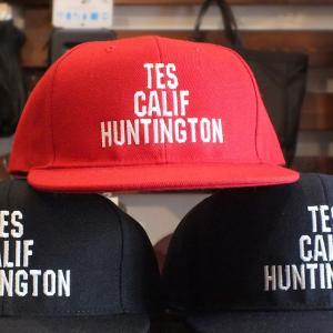 The Endless Summer TES CALIFORNIA HUNTINGTON CREW CAP