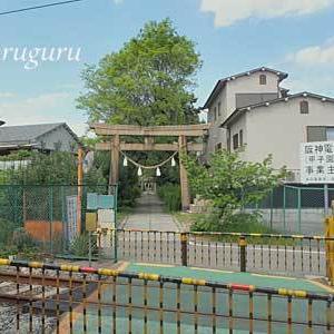 鳴尾八幡神社 (兵庫 西宮市)  其の壱